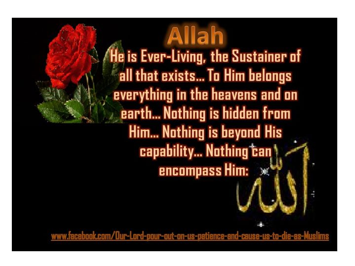 allah almighty Everything is in the hands of allah almighty how can you reject faith in allah, seeing that you were without life and he gave you life then he will cause.