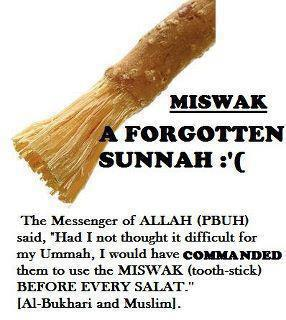 try the miswak islam the religion of peace. Black Bedroom Furniture Sets. Home Design Ideas