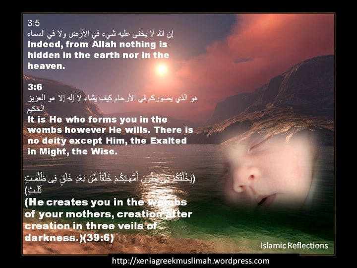 Allah (God) | Islam; The Religion of Peace | Page 3