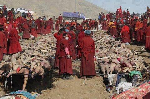 528075 10151030129324907 308886612 n Muslim Massacre in Myanmar Dr.Asjad Bokhari