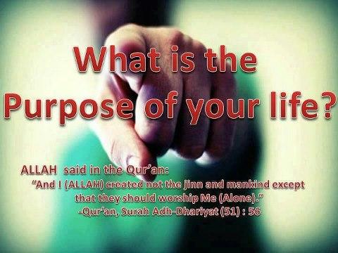 385268_islampeace1.wordpress.com_n