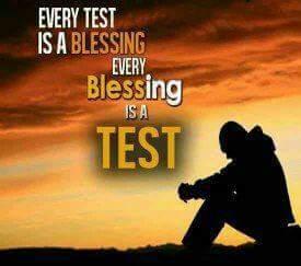 FB_IMG_1478144703863.jpg